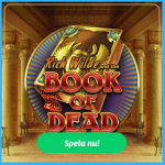 book of dead jackpott