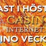 casino oktober vecka 40