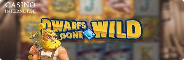 dwarfs gone wild spelautomat